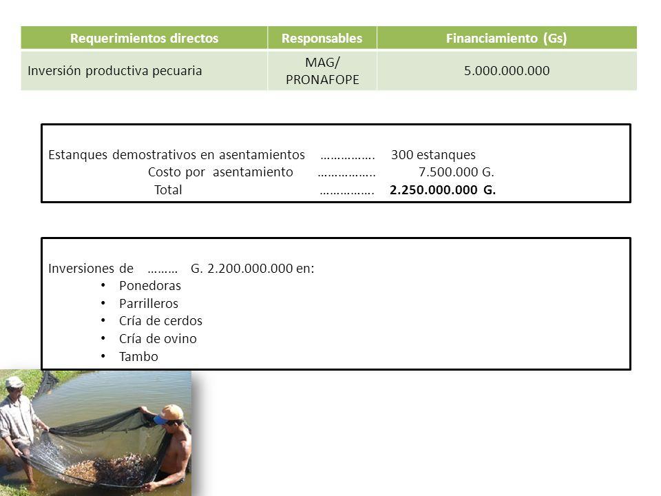 Requerimientos directosResponsablesFinanciamiento (Gs) Inversión productiva pecuaria MAG/ PRONAFOPE 5.000.000.000 Estanques demostrativos en asentamie