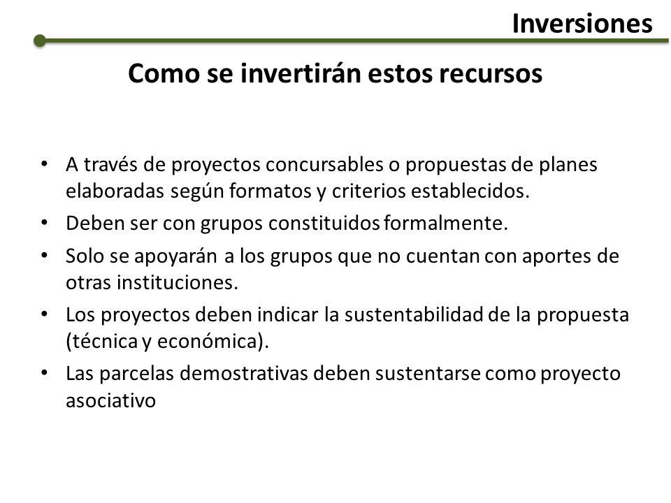 Como se invertirán estos recursos A través de proyectos concursables o propuestas de planes elaboradas según formatos y criterios establecidos. Deben