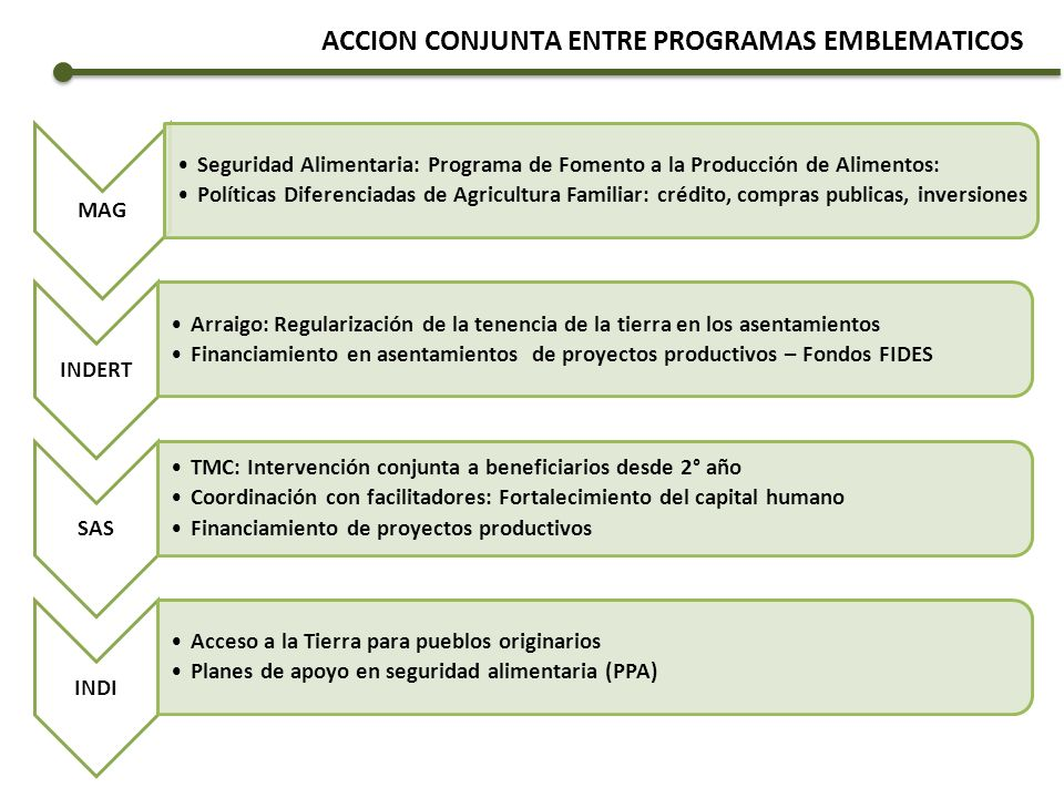 ACCION CONJUNTA ENTRE PROGRAMAS EMBLEMATICOS MAG Seguridad Alimentaria: Programa de Fomento a la Producción de Alimentos: Políticas Diferenciadas de A