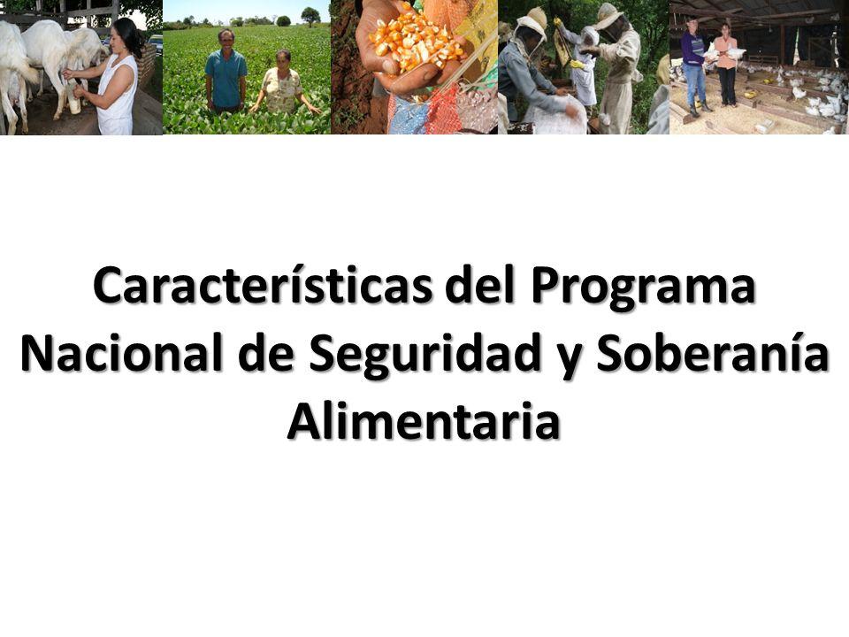 39 Logros a la Fecha Talleres de coordinación con Organizaciones de productores conjuntamente con el INDERT 40% de los beneficiarios de PPA a la fecha están inscriptos en el RENAF 60% de los productores implementaron Plan productivo de Invierno, principalmente de rubros de autoconsumo (mandioca, arveja, hortalizas para chacra, etc.) y abonos verdes (mucuna) Se realizan reuniones de Coordinacion con técnicos del Programa, la sociedad civil y beneficiarios del PPA a fin de presentar avances y realizar la planificación y ajustes de las actividades