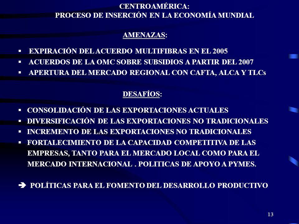 13 CENTROAMÉRICA: PROCESO DE INSERCIÓN EN LA ECONOMÍA MUNDIAL AMENAZAS: EXPIRACIÓN DEL ACUERDO MULTIFIBRAS EN EL 2005 ACUERDOS DE LA OMC SOBRE SUBSIDI