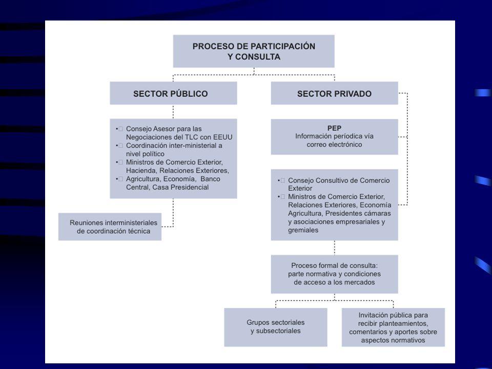 27 Proceso de participación y consulta