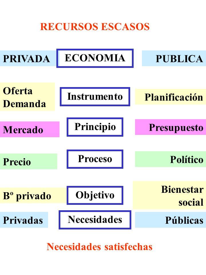 PRIVADA Oferta Demanda Mercado Precio Bº privado Privadas PUBLICA Planificación Presupuesto Político Bienestar social Públicas ECONOMIA Instrumento Pr