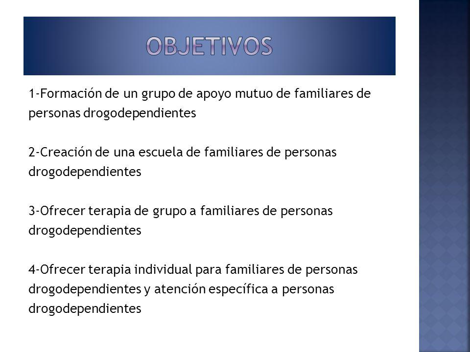 1-Formación de un grupo de apoyo mutuo de familiares de personas drogodependientes 2-Creación de una escuela de familiares de personas drogodependient