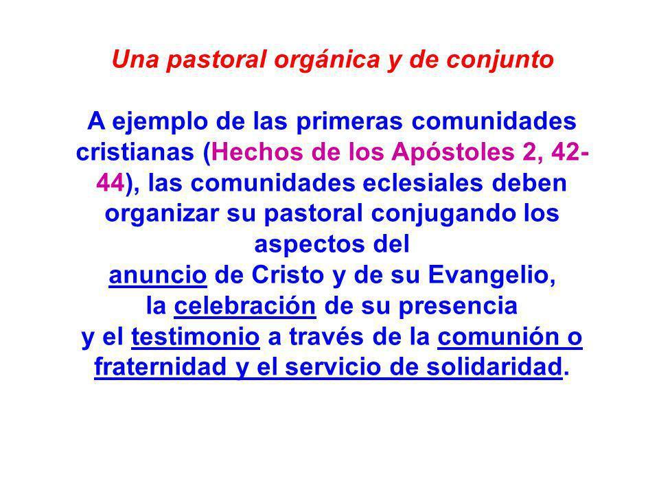 Una pastoral orgánica y de conjunto A ejemplo de las primeras comunidades cristianas (Hechos de los Apóstoles 2, 42- 44), las comunidades eclesiales d