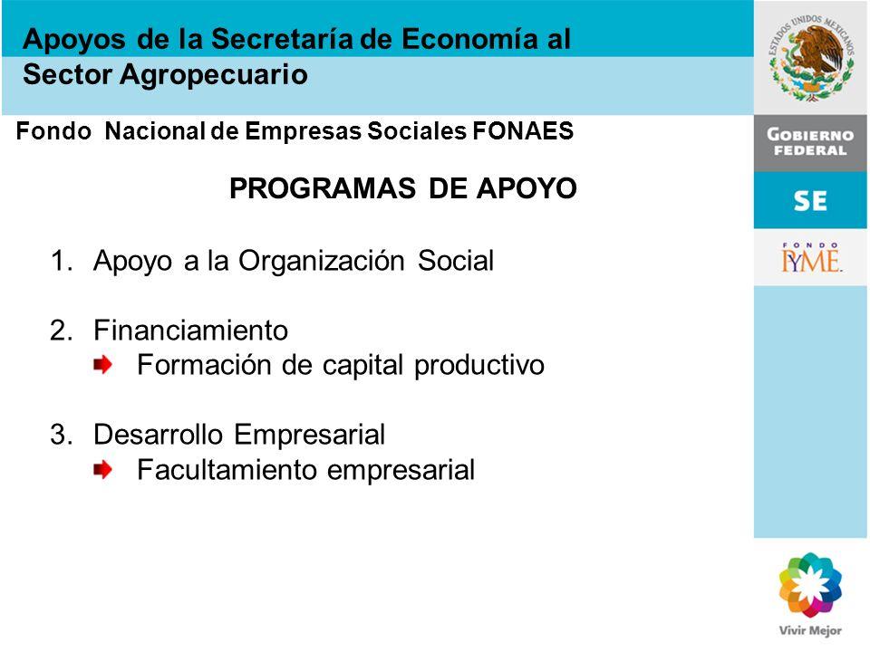 Apoyos de la Secretaría de Economía al Sector Agropecuario Fondo Nacional de Empresas Sociales FONAES PROGRAMAS DE APOYO 1.Apoyo a la Organización Soc