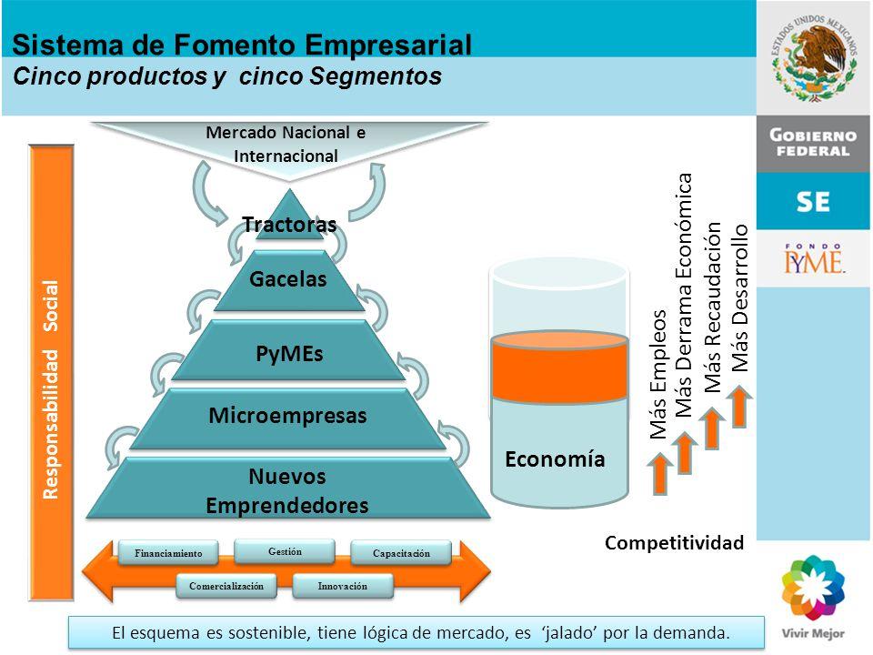 Gacelas PyMEs Microempresas Nuevos Emprendedores Tractoras Mercado Nacional e Internacional Responsabilidad Social Financiamiento Comercialización Ges