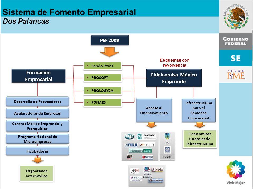 PEF 2009 Formación Empresarial Fideicomiso México Emprende Esquemas con revolvencia Sistema de Fomento Empresarial Dos Palancas Infraestructura para e