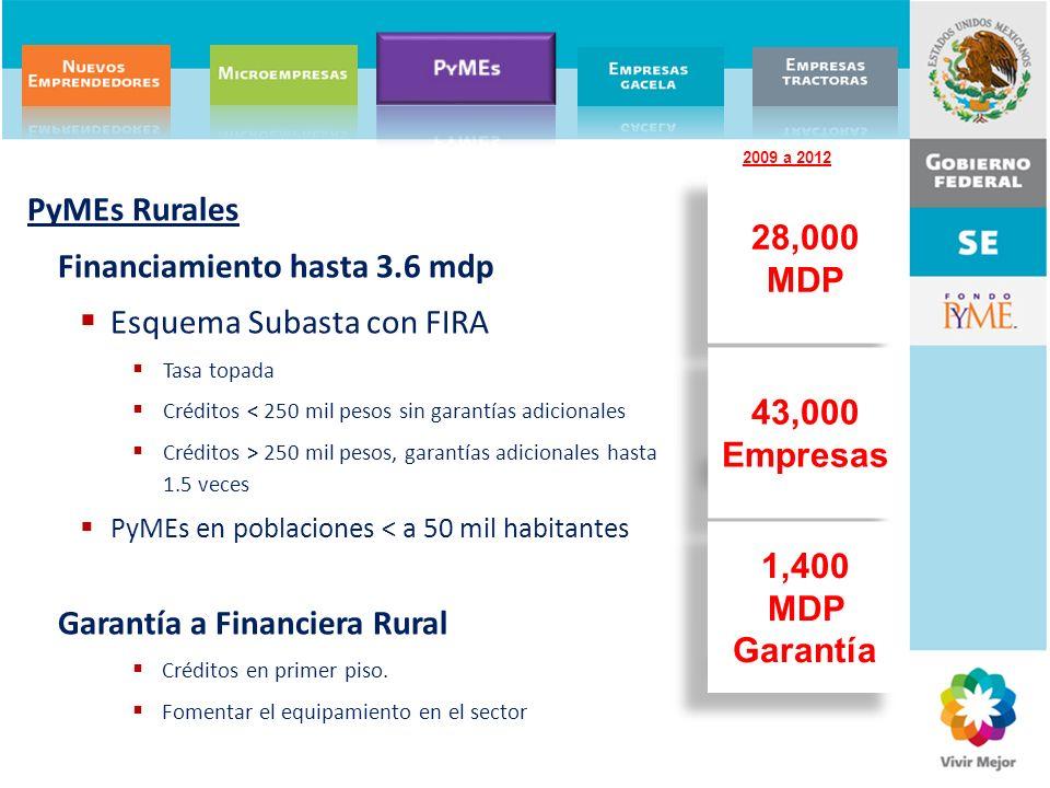 PyMEs Rurales Financiamiento hasta 3.6 mdp Esquema Subasta con FIRA Tasa topada Créditos < 250 mil pesos sin garantías adicionales Créditos > 250 mil