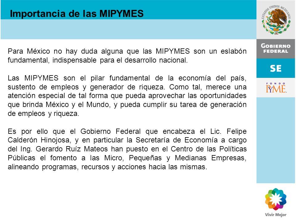 Para México no hay duda alguna que las MIPYMES son un eslabón fundamental, indispensable para el desarrollo nacional. Las MIPYMES son el pilar fundame