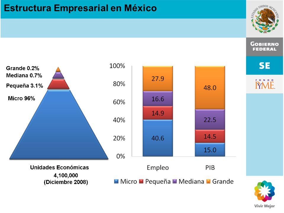Estructura Empresarial en México