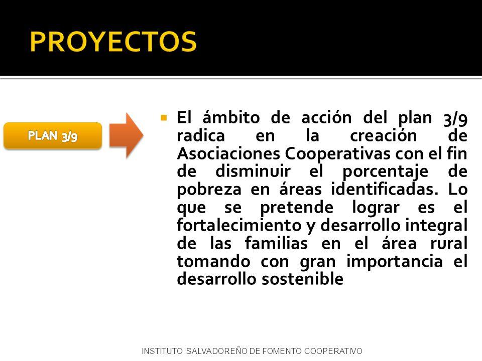 El ámbito de acción del plan 3/9 radica en la creación de Asociaciones Cooperativas con el fin de disminuir el porcentaje de pobreza en áreas identifi