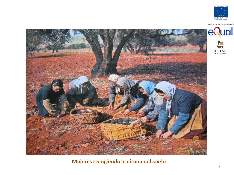 Mujeres recogiendo aceituna del suelo 3