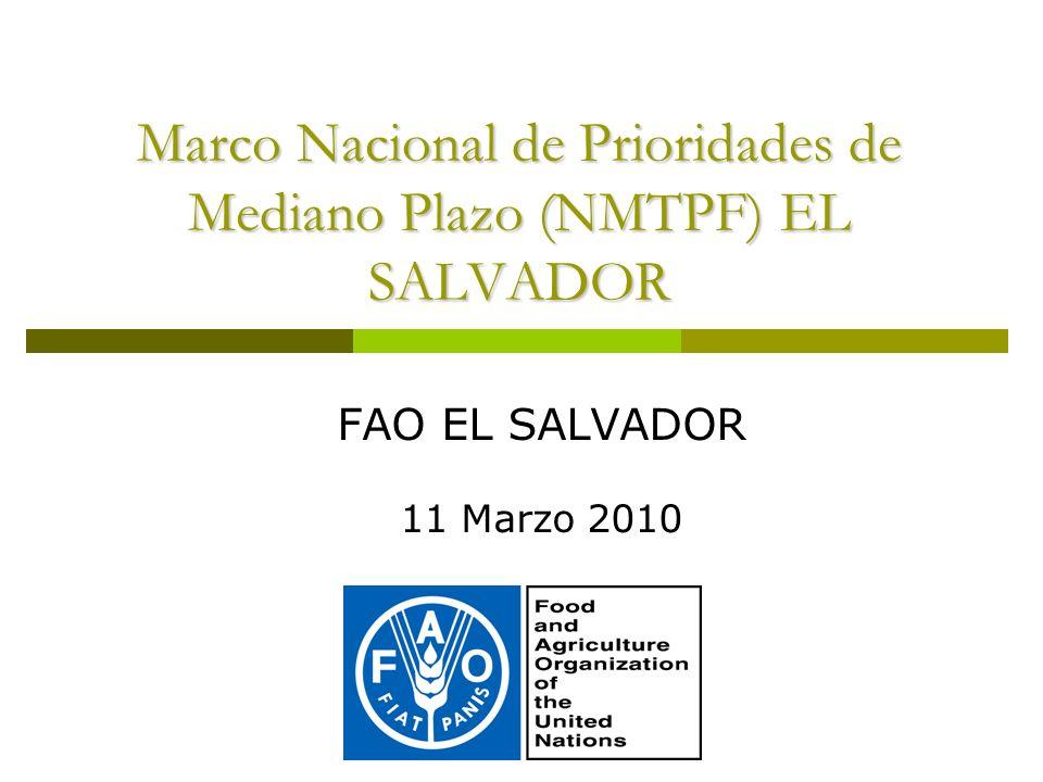Marco Nacional de Prioridades de Mediano Plazo (NMTPF) EL SALVADOR FAO EL SALVADOR 11 Marzo 2010