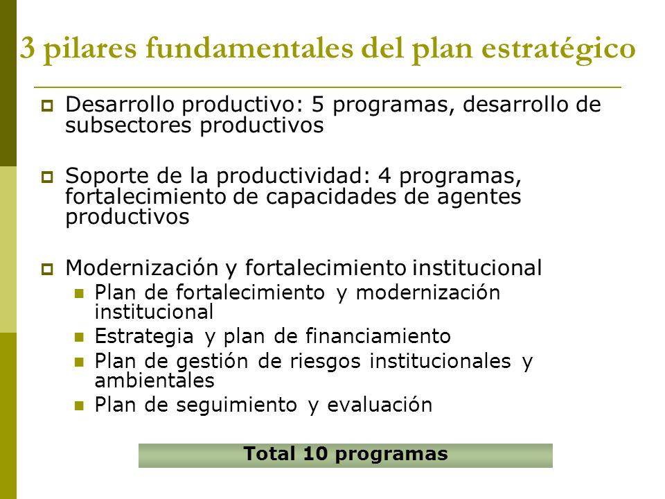 3 pilares fundamentales del plan estratégico Desarrollo productivo: 5 programas, desarrollo de subsectores productivos Soporte de la productividad: 4