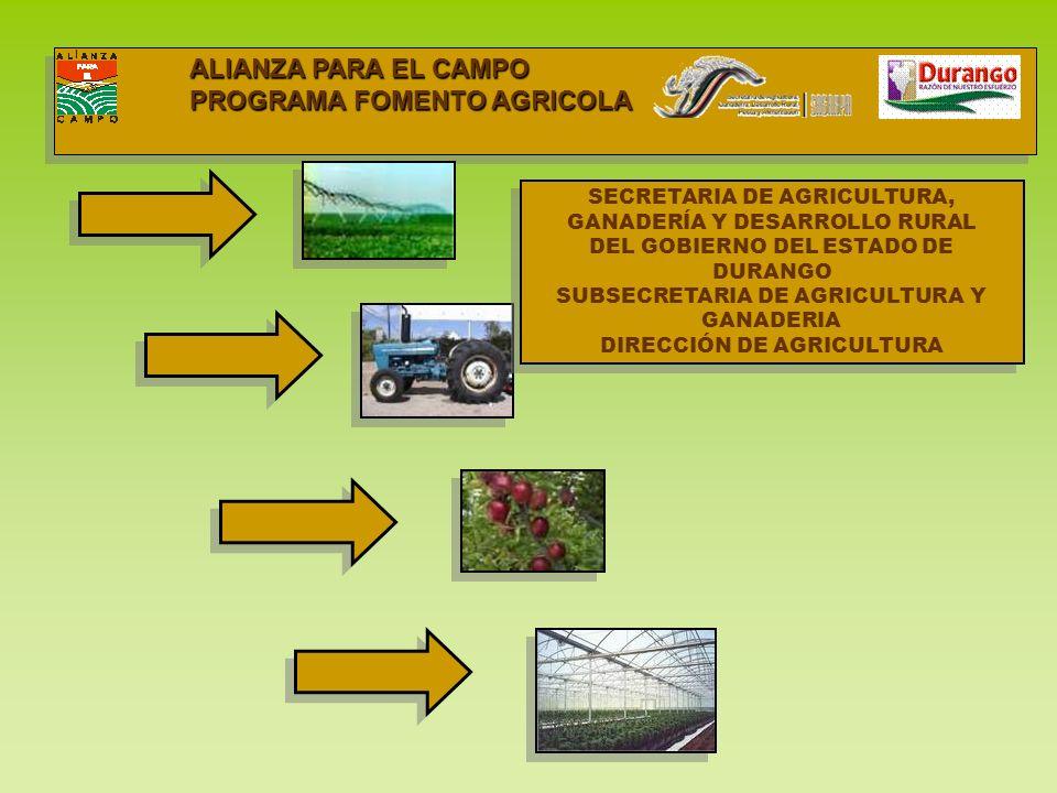 Fomento Agrícola Autorizado 2006 I PARA EL AÑO 2006 SE PROGRAMARON DENTRO DEL SUBPROGRAMA DE FOMENTO AGRICOLA LOS SIGUIENTES CONCEPTOS: ESTABLECIMIENTO DE NUEVAS UNIDADES DE PRODUCCIÓN FRUTICOLA Y HORTICOLA DE LOS CULTIVOS ESTRATÉGICOS DEL ESTADO TALES COMO: MANZANO, NOGAL, DURAZNO, MELON, CHILE Y TOMATE.