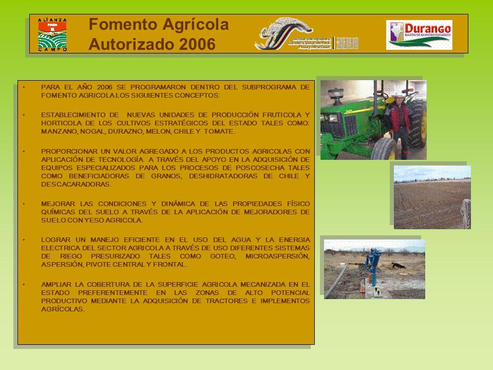 Fomento Agrícola Autorizado 2006 I PARA EL AÑO 2006 SE PROGRAMARON DENTRO DEL SUBPROGRAMA DE FOMENTO AGRICOLA LOS SIGUIENTES CONCEPTOS: ESTABLECIMIENT