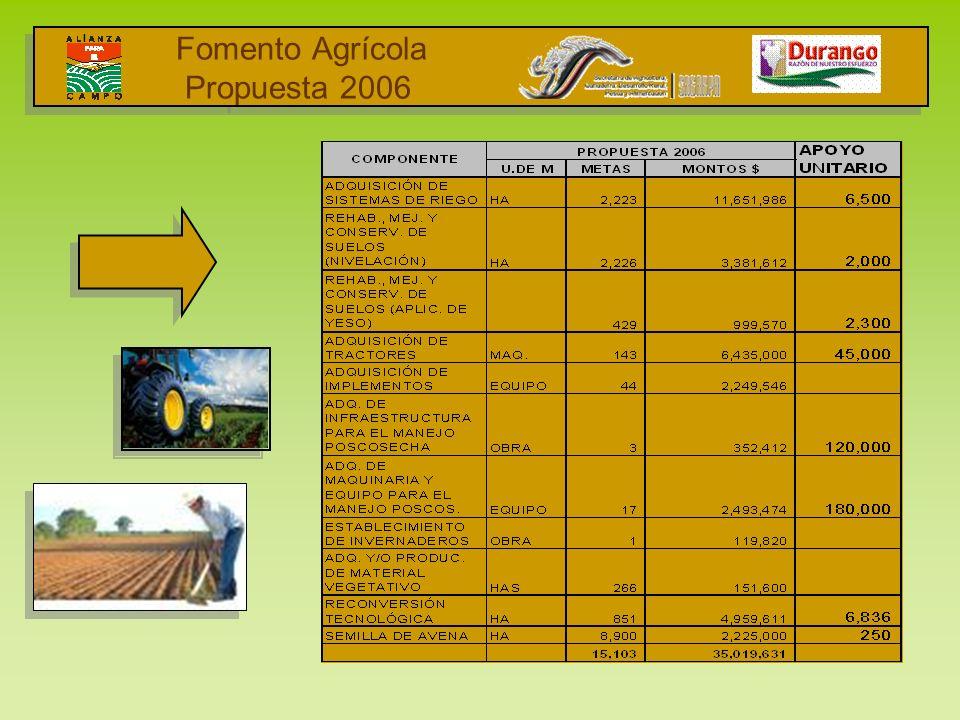 Fomento Agrícola Propuesta 2006 I