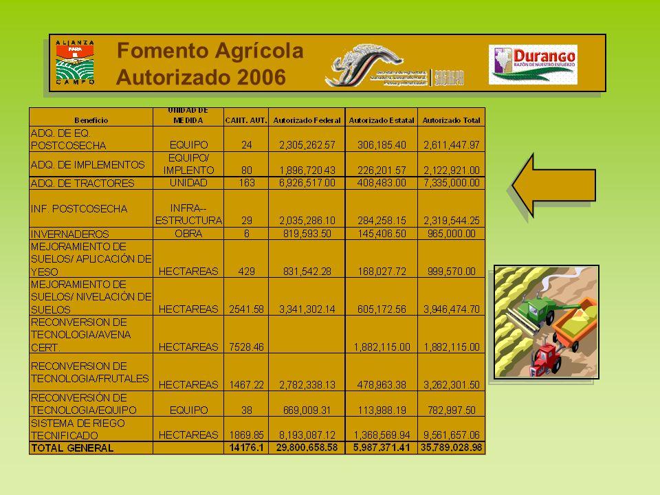 Fomento Agrícola Autorizado 2006 I