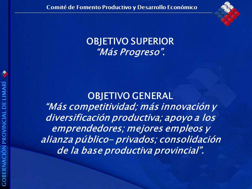 GOBERNACIÓN PROVINCIAL DE LIMARÍ OBJETIVO SUPERIOR Más Progreso.
