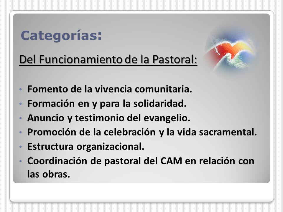 Categorías : Del Funcionamiento de la Pastoral: Fomento de la vivencia comunitaria. Formación en y para la solidaridad. Anuncio y testimonio del evang