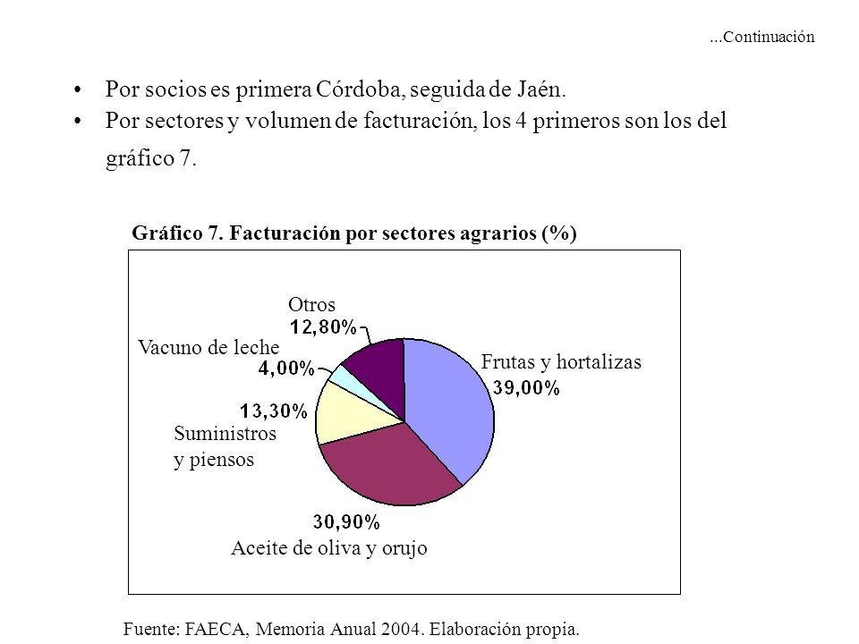 ...Continuación Por socios es primera Córdoba, seguida de Jaén. Por sectores y volumen de facturación, los 4 primeros son los del gráfico 7. Gráfico 7