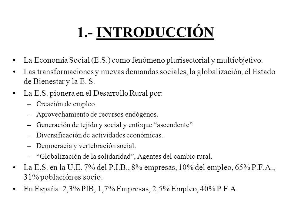1.- INTRODUCCIÓN La Economía Social (E.S.) como fenómeno plurisectorial y multiobjetivo.