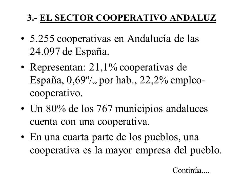 3.- EL SECTOR COOPERATIVO ANDALUZ 5.255 cooperativas en Andalucía de las 24.097 de España.