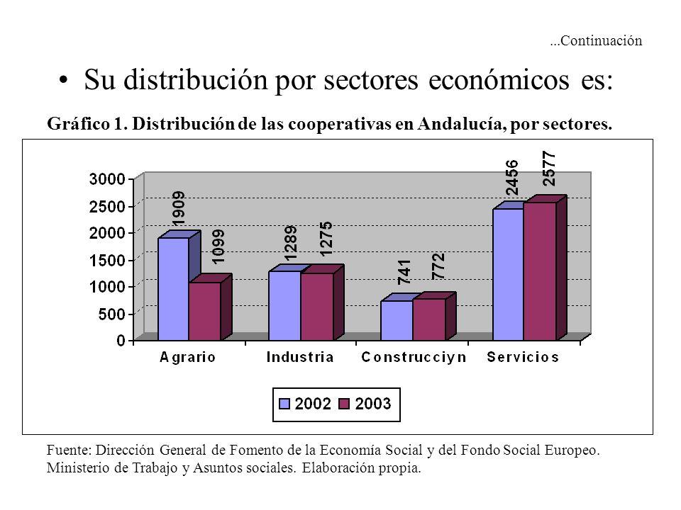 ...Continuación Su distribución por sectores económicos es: Gráfico 1. Distribución de las cooperativas en Andalucía, por sectores. Fuente: Dirección