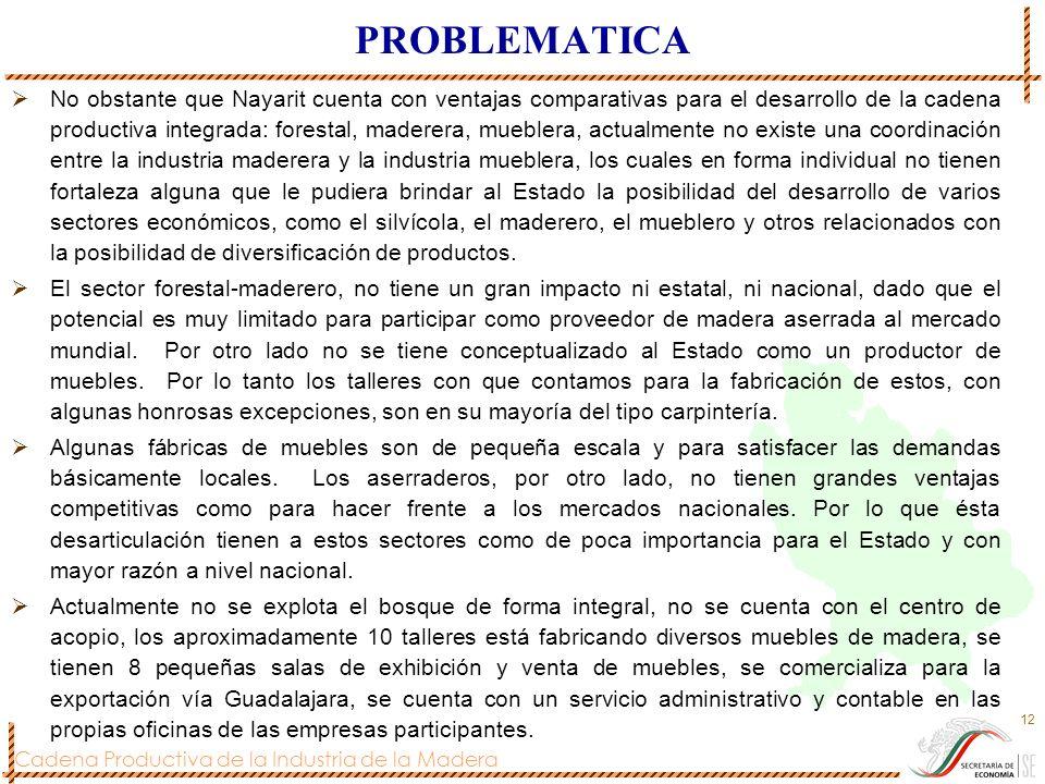 Cadena Productiva de la Industria de la Madera 12 PROBLEMATICA No obstante que Nayarit cuenta con ventajas comparativas para el desarrollo de la caden