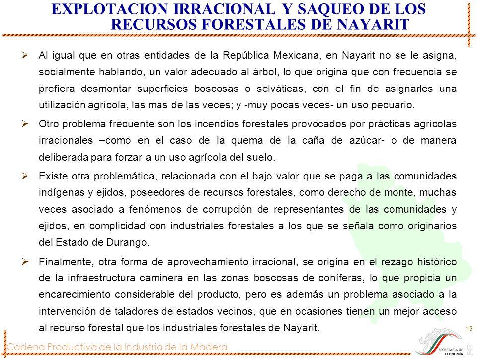 Cadena Productiva de la Industria de la Madera 13 EXPLOTACION IRRACIONAL Y SAQUEO DE LOS RECURSOS FORESTALES DE NAYARIT Al igual que en otras entidade