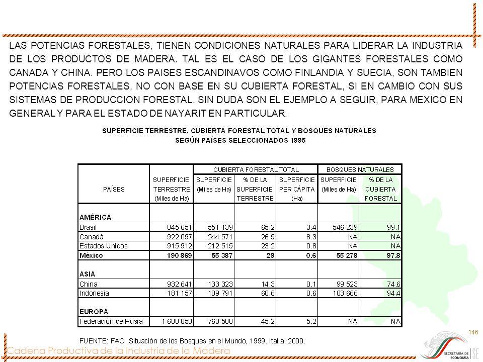 Cadena Productiva de la Industria de la Madera 146 LAS POTENCIAS FORESTALES, TIENEN CONDICIONES NATURALES PARA LIDERAR LA INDUSTRIA DE LOS PRODUCTOS D