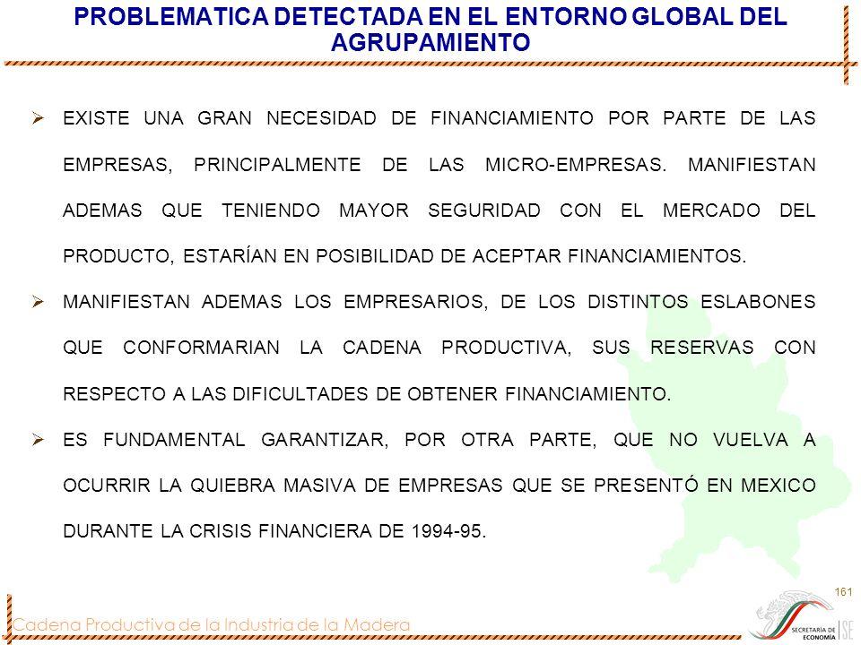 Cadena Productiva de la Industria de la Madera 161 PROBLEMATICA DETECTADA EN EL ENTORNO GLOBAL DEL AGRUPAMIENTO EXISTE UNA GRAN NECESIDAD DE FINANCIAM