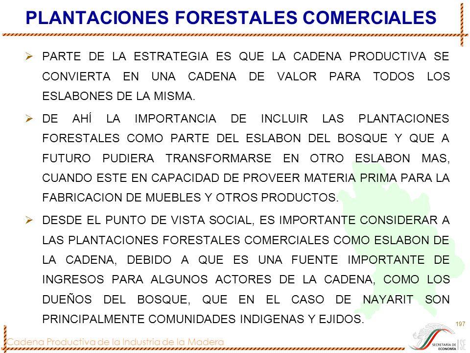 Cadena Productiva de la Industria de la Madera 197 PLANTACIONES FORESTALES COMERCIALES PARTE DE LA ESTRATEGIA ES QUE LA CADENA PRODUCTIVA SE CONVIERTA