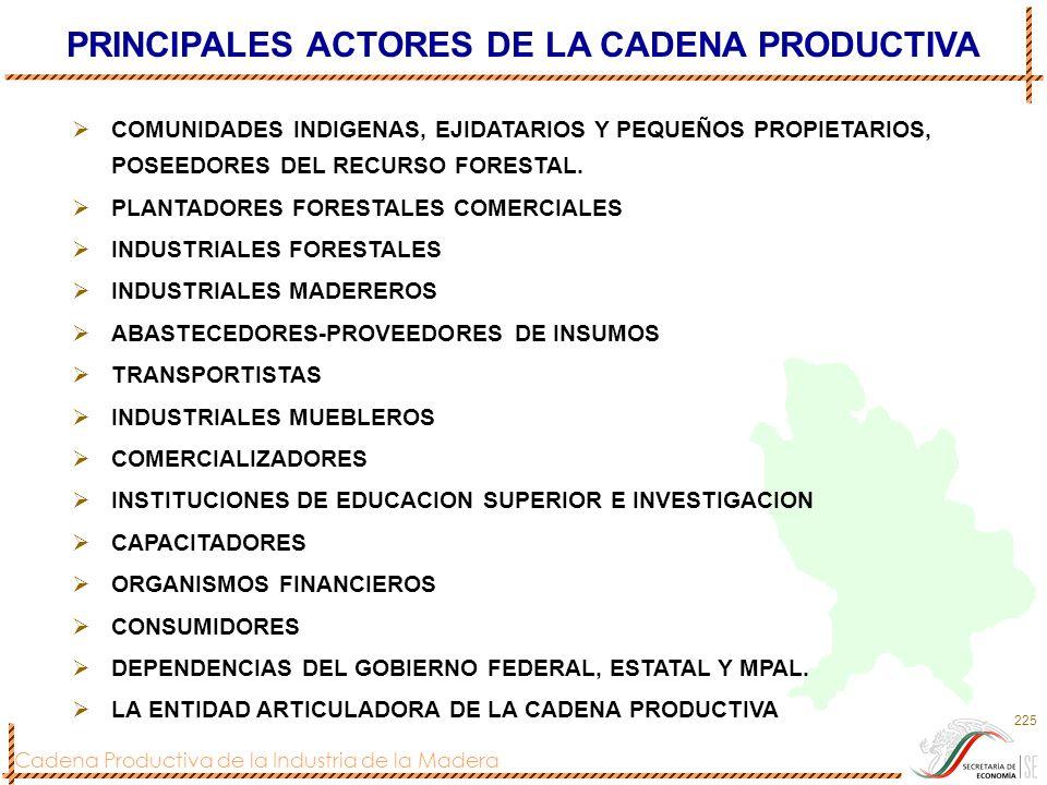 Cadena Productiva de la Industria de la Madera 225 PRINCIPALES ACTORES DE LA CADENA PRODUCTIVA COMUNIDADES INDIGENAS, EJIDATARIOS Y PEQUEÑOS PROPIETAR