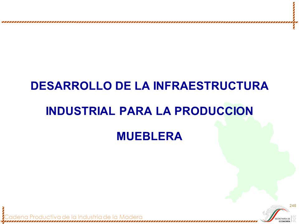 Cadena Productiva de la Industria de la Madera 248 DESARROLLO DE LA INFRAESTRUCTURA INDUSTRIAL PARA LA PRODUCCION MUEBLERA