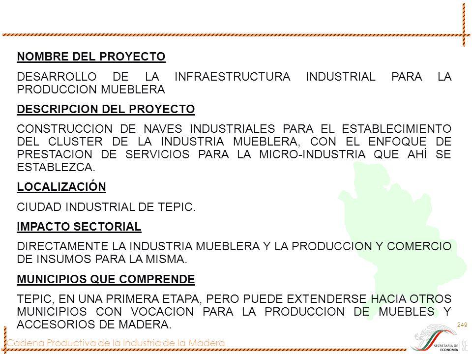Cadena Productiva de la Industria de la Madera 249 NOMBRE DEL PROYECTO DESARROLLO DE LA INFRAESTRUCTURA INDUSTRIAL PARA LA PRODUCCION MUEBLERA DESCRIP