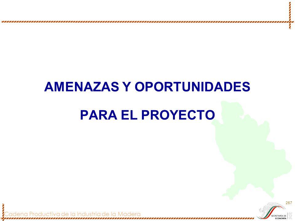 Cadena Productiva de la Industria de la Madera 267 AMENAZAS Y OPORTUNIDADES PARA EL PROYECTO