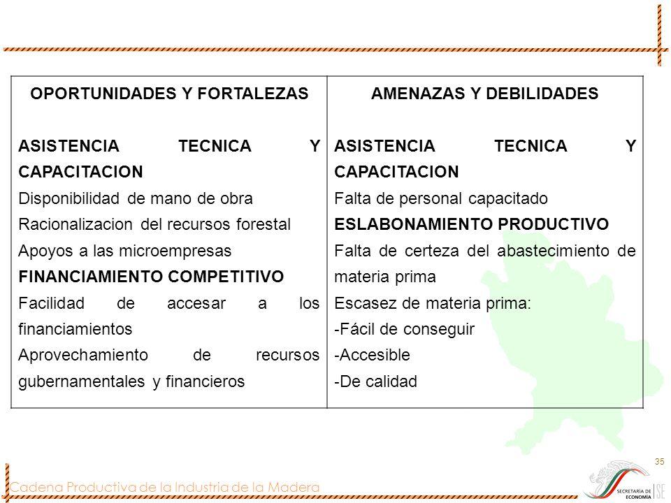 Cadena Productiva de la Industria de la Madera 35 OPORTUNIDADES Y FORTALEZAS ASISTENCIA TECNICA Y CAPACITACION Disponibilidad de mano de obra Racional