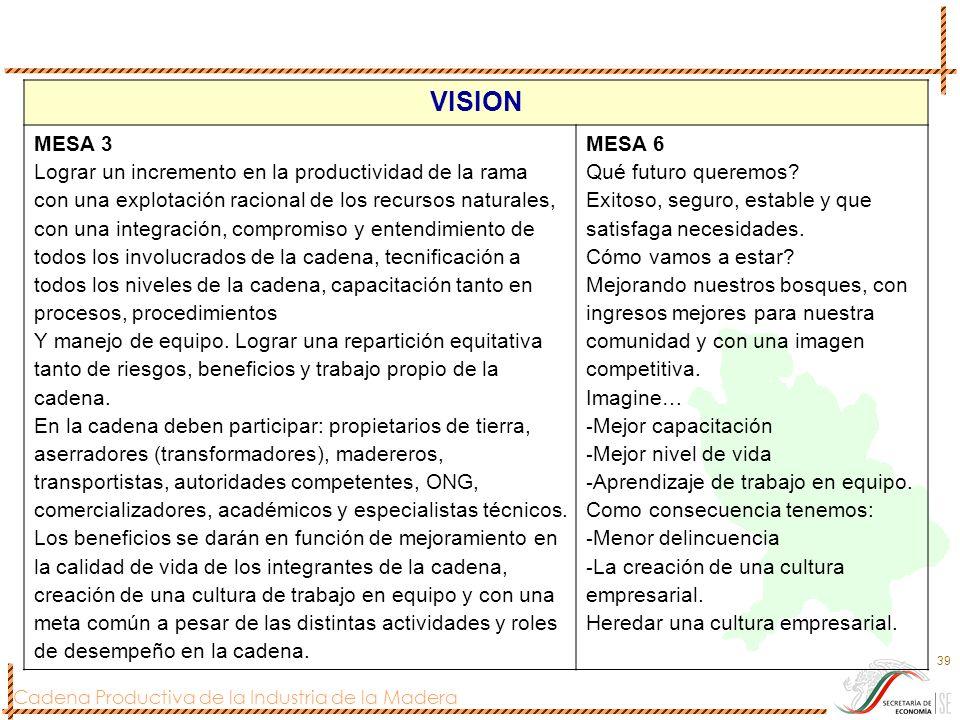 Cadena Productiva de la Industria de la Madera 39 VISION MESA 3 Lograr un incremento en la productividad de la rama con una explotación racional de lo