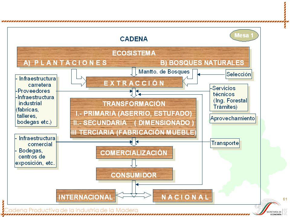 Cadena Productiva de la Industria de la Madera 61