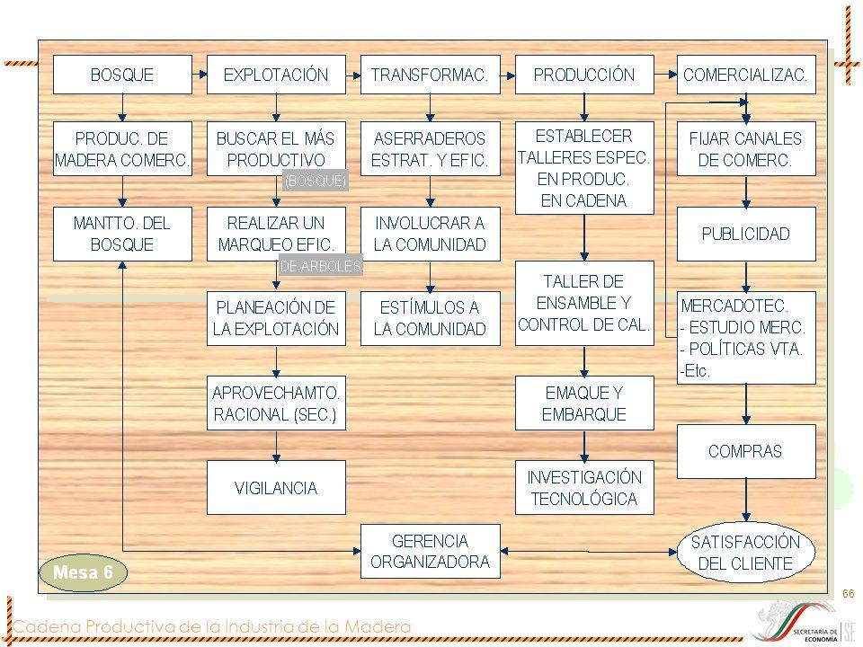 Cadena Productiva de la Industria de la Madera 66