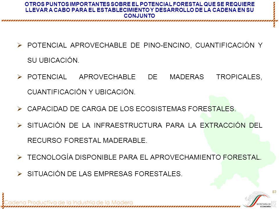 Cadena Productiva de la Industria de la Madera 83 OTROS PUNTOS IMPORTANTES SOBRE EL POTENCIAL FORESTAL QUE SE REQUIERE LLEVAR A CABO PARA EL ESTABLECI