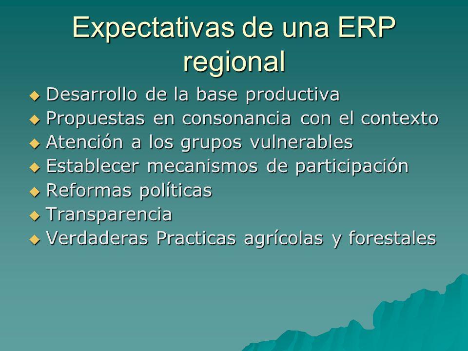 Expectativas de una ERP regional Desarrollo de la base productiva Desarrollo de la base productiva Propuestas en consonancia con el contexto Propuesta
