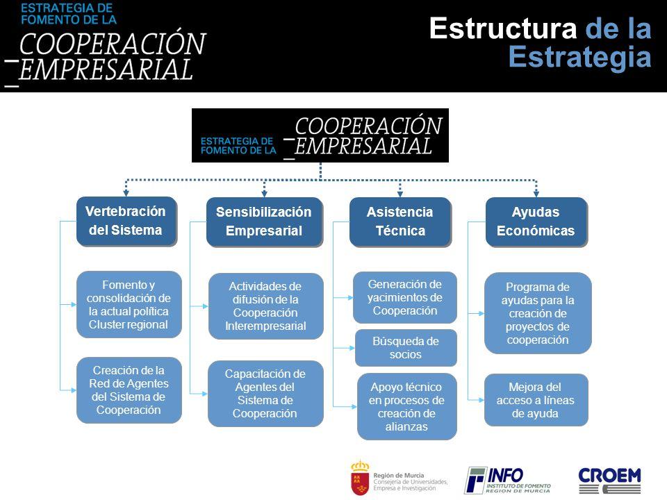 Estructura de la Estrategia Vertebración del Sistema Sensibilización Empresarial Asistencia Técnica Ayudas Económicas Fomento y consolidación de la ac