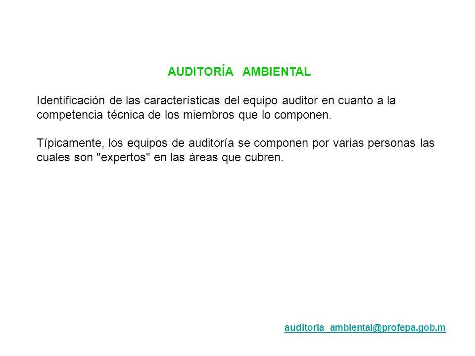 AUDITORÍA AMBIENTAL Identificación de las características del equipo auditor en cuanto a la competencia técnica de los miembros que lo componen. Típic