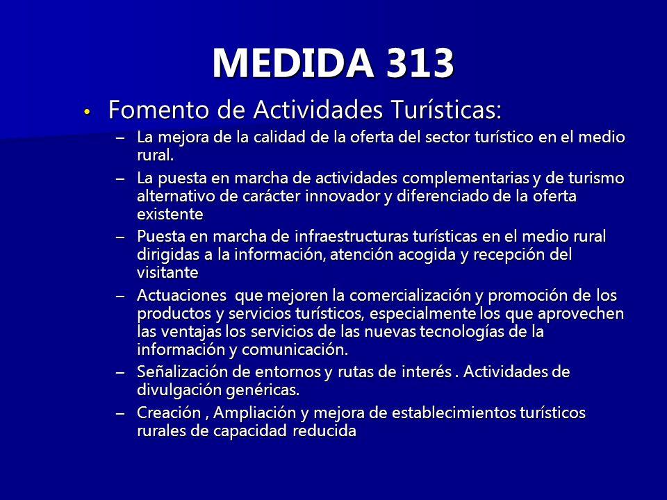 MEDIDA 313 Fomento de Actividades Turísticas: Fomento de Actividades Turísticas: –La mejora de la calidad de la oferta del sector turístico en el medio rural.