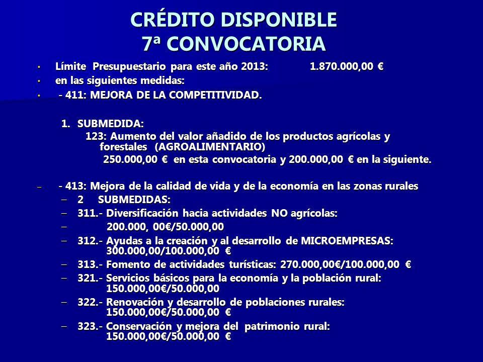 CRÉDITO DISPONIBLE 7ª CONVOCATORIA Límite Presupuestario para este año 2013: 1.870.000,00 Límite Presupuestario para este año 2013: 1.870.000,00 en las siguientes medidas: en las siguientes medidas: - 411: MEJORA DE LA COMPETITIVIDAD.