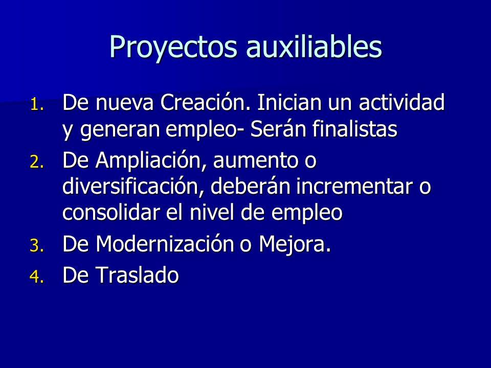 Proyectos auxiliables 1.De nueva Creación.