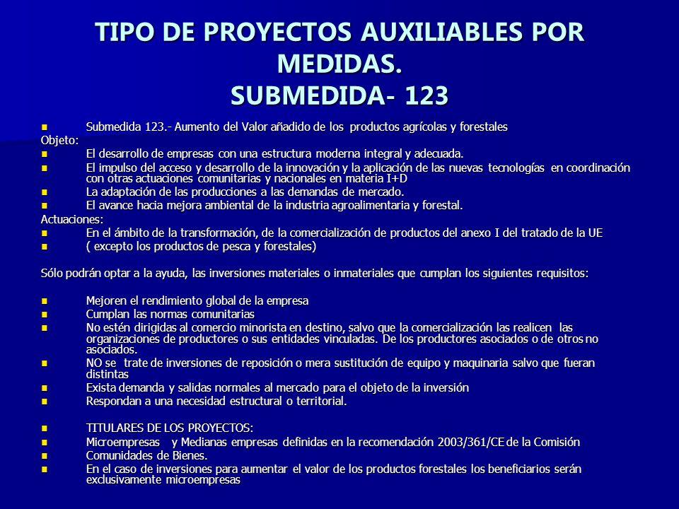 TIPO DE PROYECTOS AUXILIABLES POR MEDIDAS.